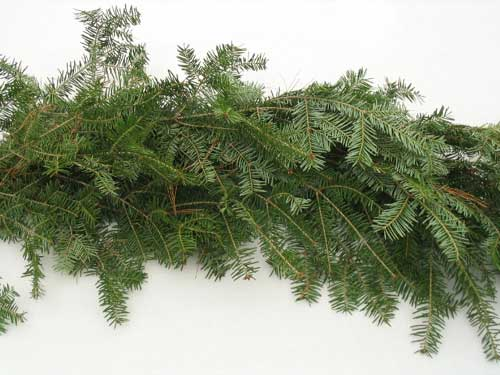 25' Holiday Garland - ONLY 14 LEFT